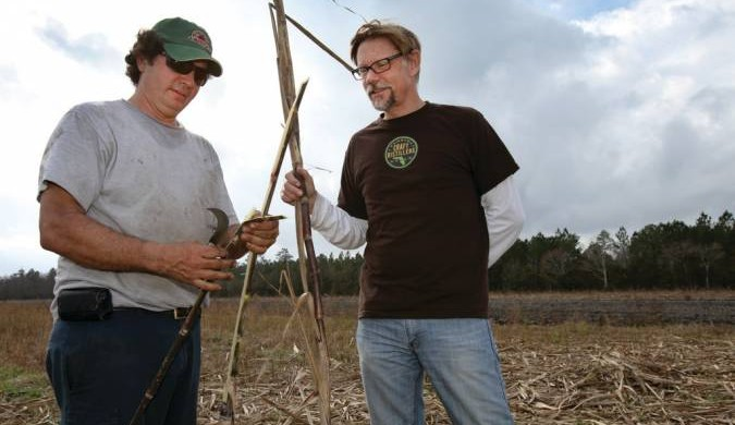 Phil McDaniels and KYV Farms in St. Johns County